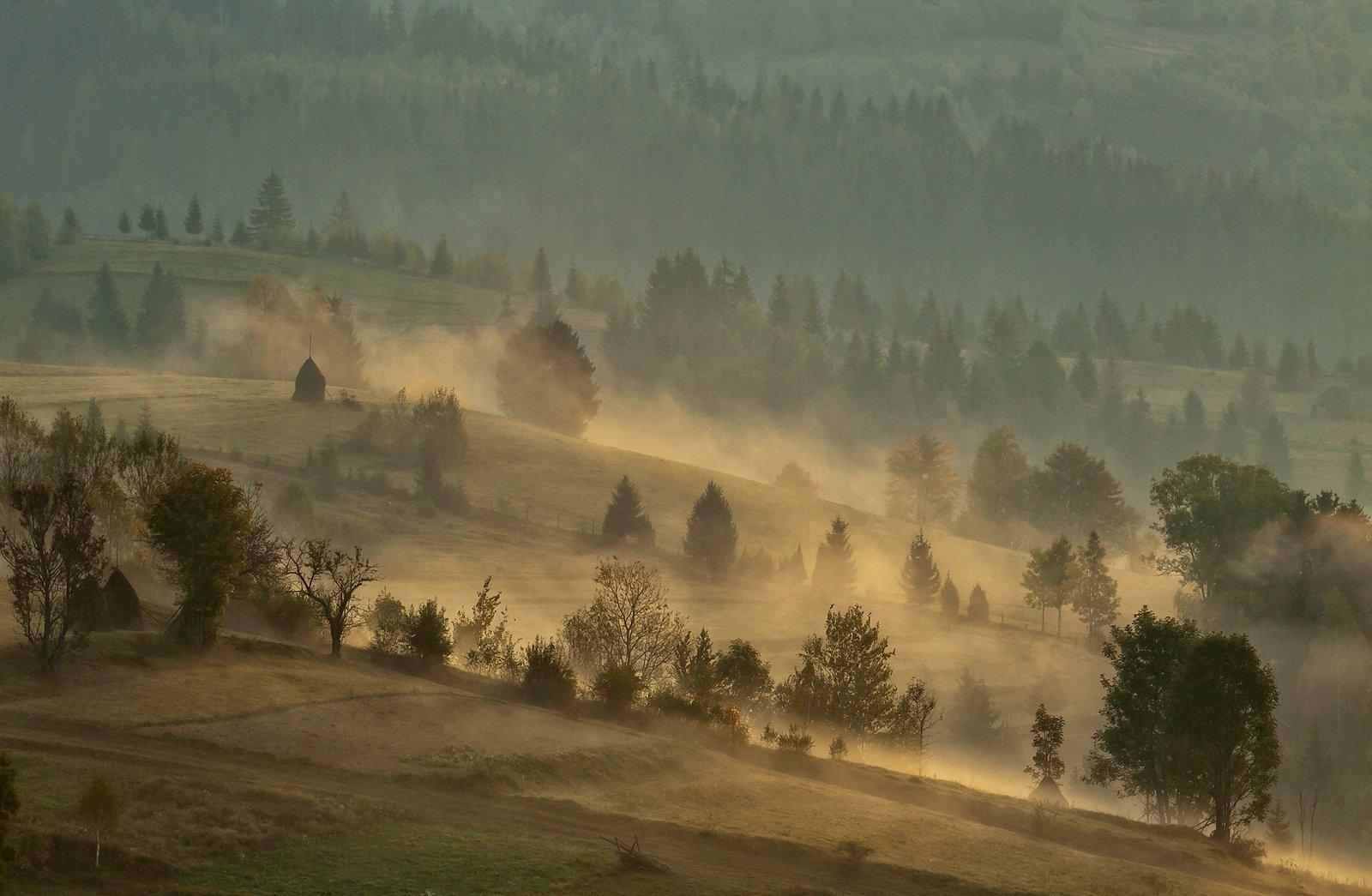 горы, карпаты, осень, туман, утро, Михаил Глаголев
