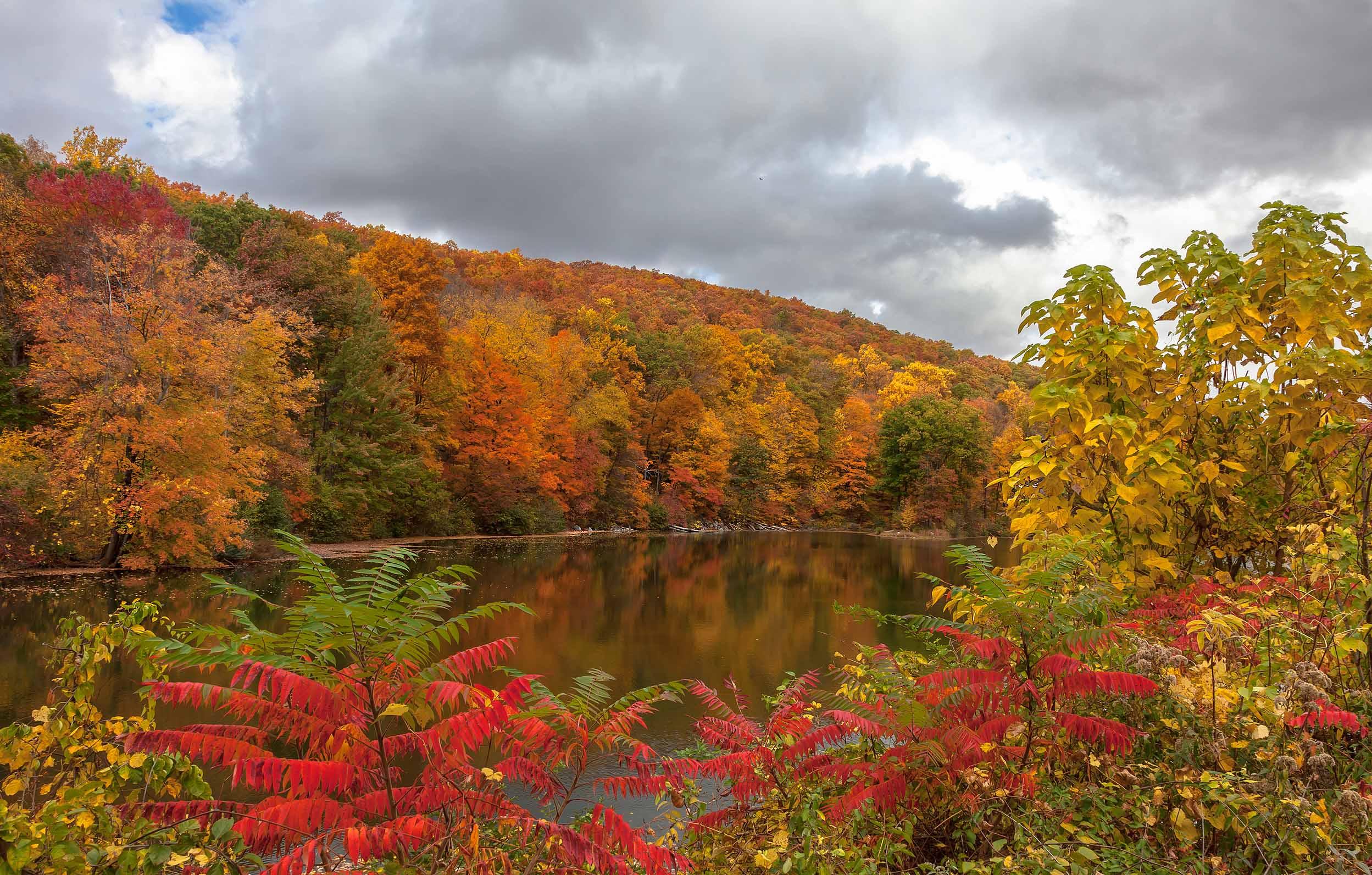 пейзаж,природа,осень,листья,небо, облака,деревьяозеро,красный,, Антонина