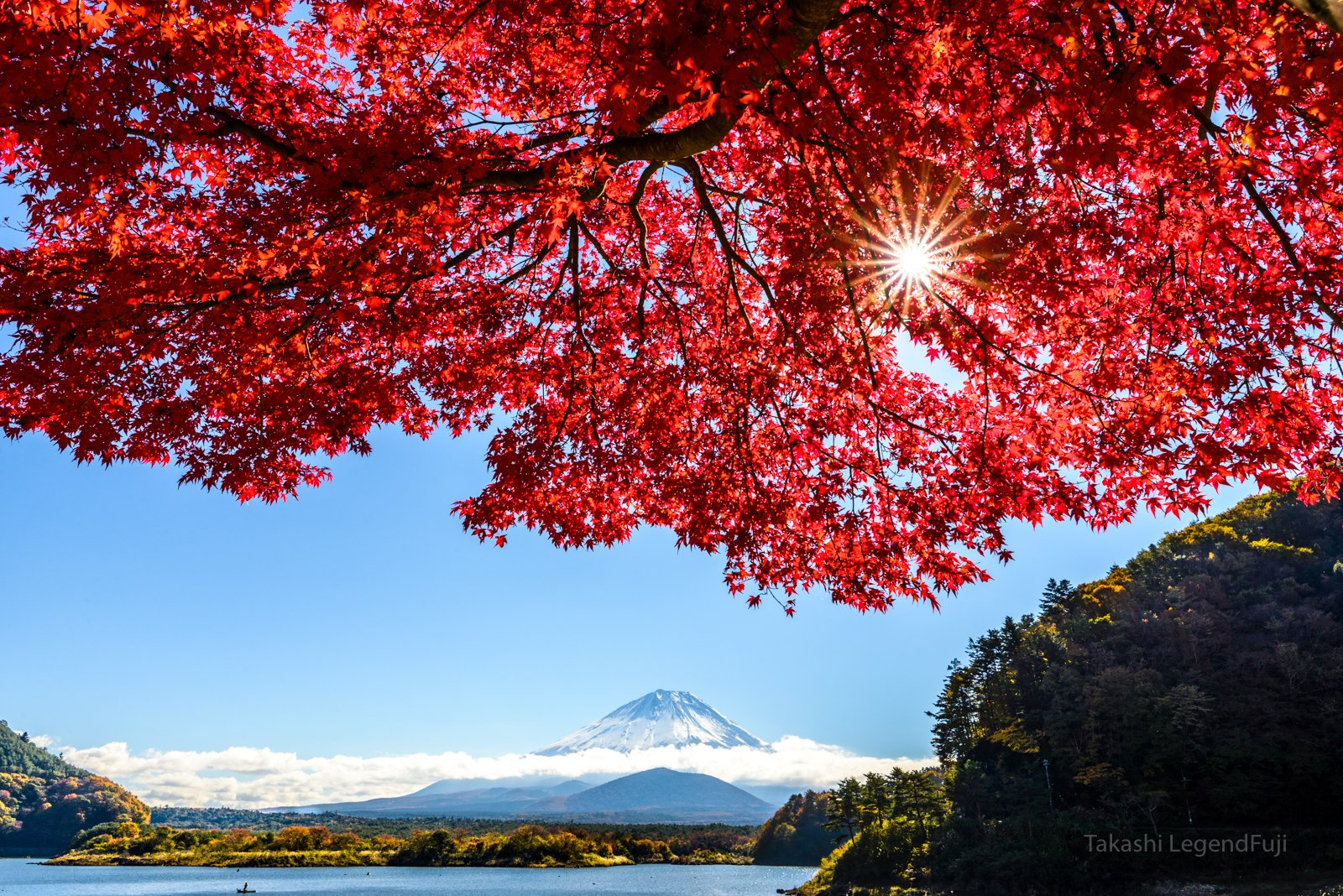 Fuji,mountain,Japan,lake,water,sky,blue,red,leave,autumn,tree,sun,cloud, Takashi