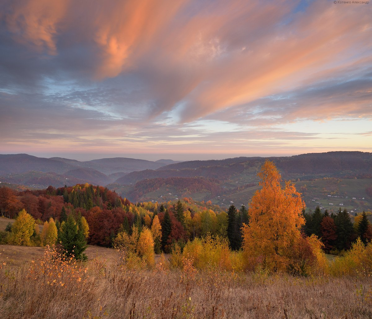 горы, осень, карпаты, Александр Котенко