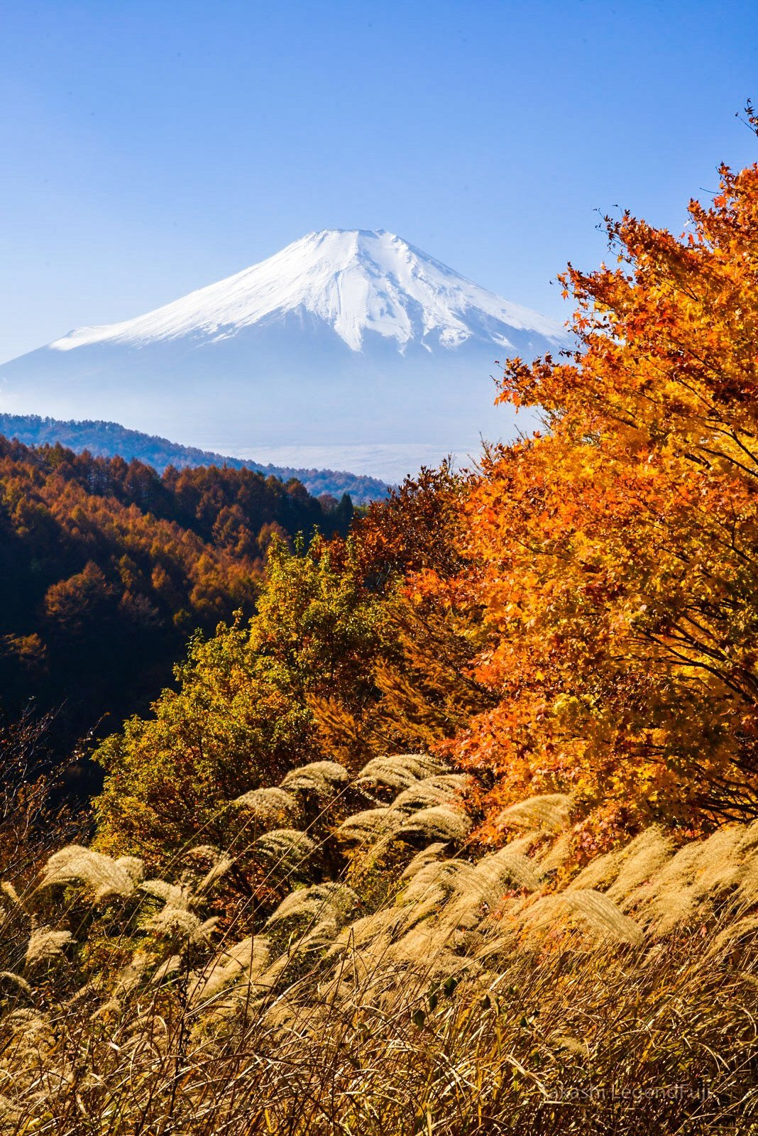 fuji,mountain,autumn,yellow,orange,blue,sky,japan, Takashi