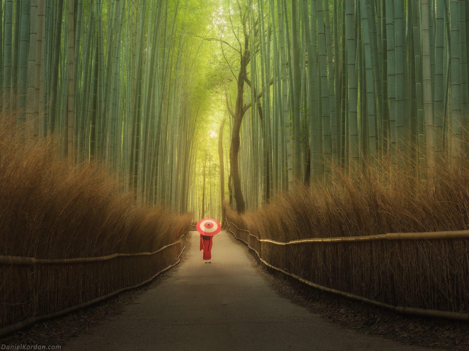 Япония, Даниил Коржонов