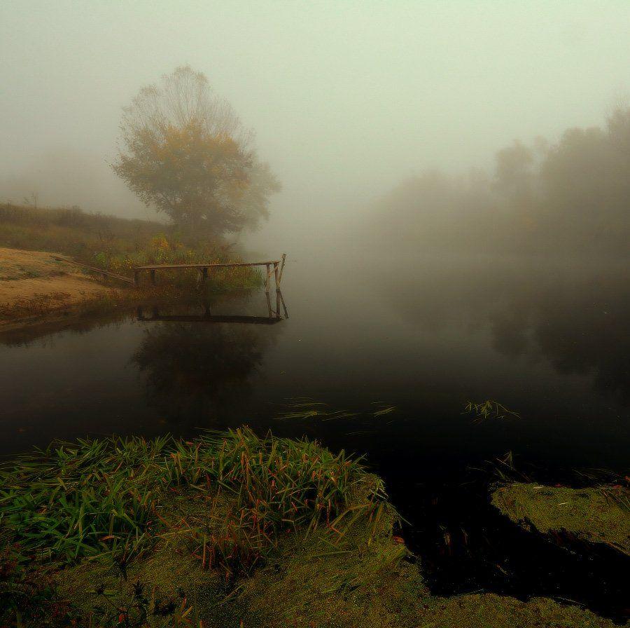 осень, река, туман, утро, Петриченко Валерий