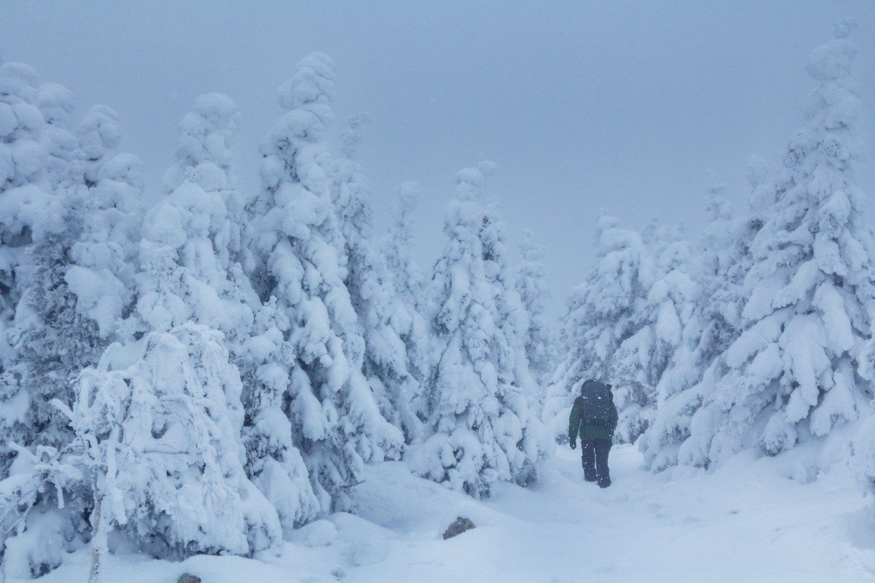 урал, южный урал, зюраткуль, зимний лес, зима, путешественник, турист, Сергей Гарифуллин