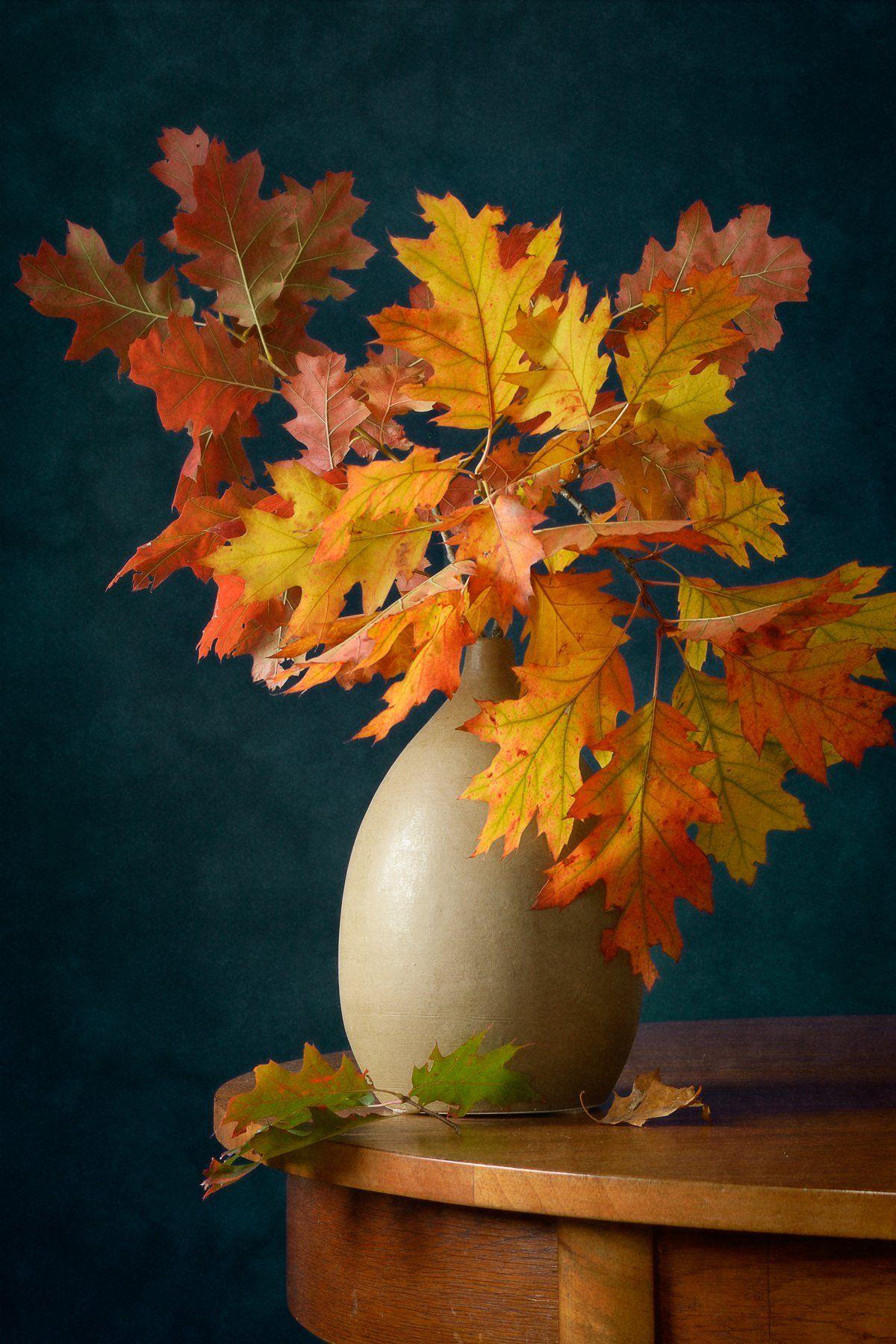 Натюрморт, букет, ярко-желтый, красный, осенний, листья, коричневый, ваза, интерьер, Николай Панов