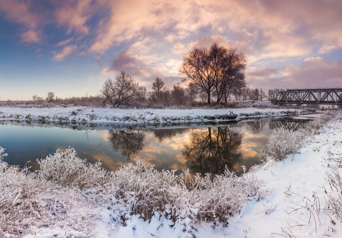зима, рассвет, снег, лес, Антон Петрусь