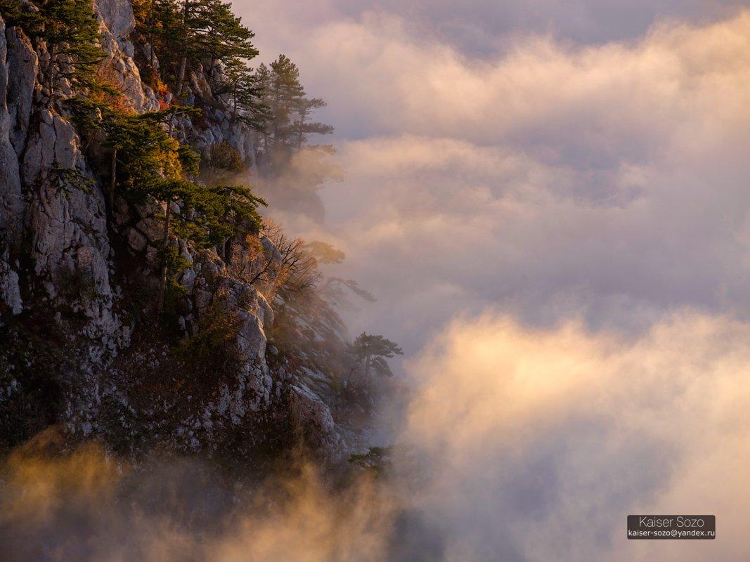 ай-петри, рассвет, туман, облака, сосны, скалы, Kaiser Sozo