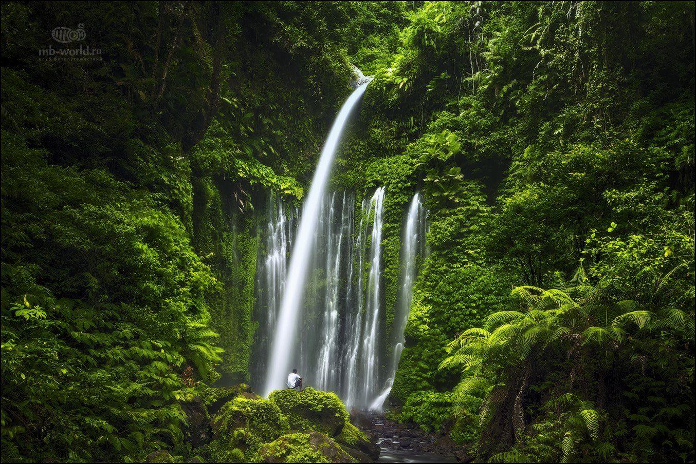 Индонезия, Ломбок, водопад, джунгли, природа, остров, Михаил Воробьев