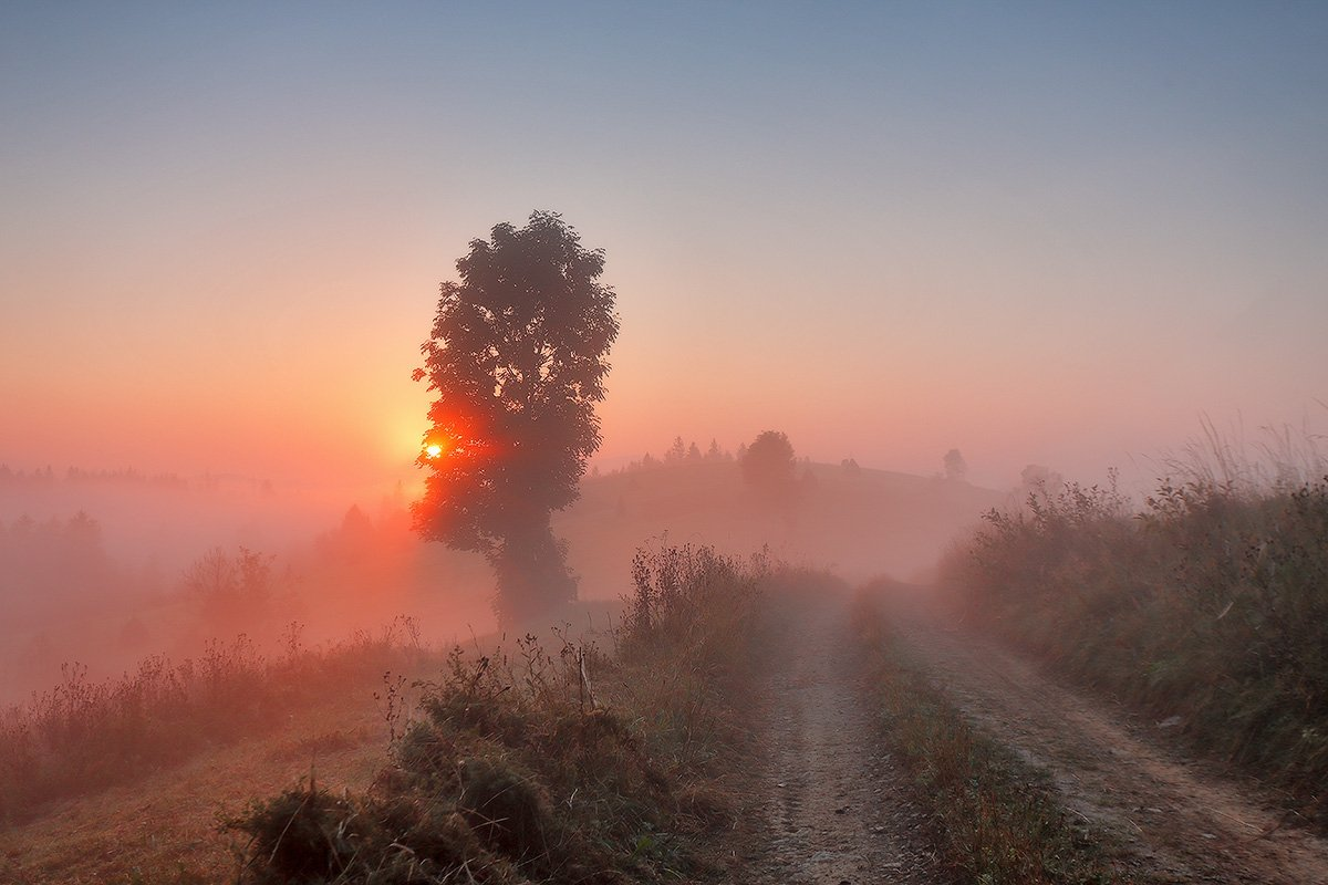 Карпаты, Горы, Осень, Сентябрь, Утро, Рассвет, Туман, Вейзе Максим