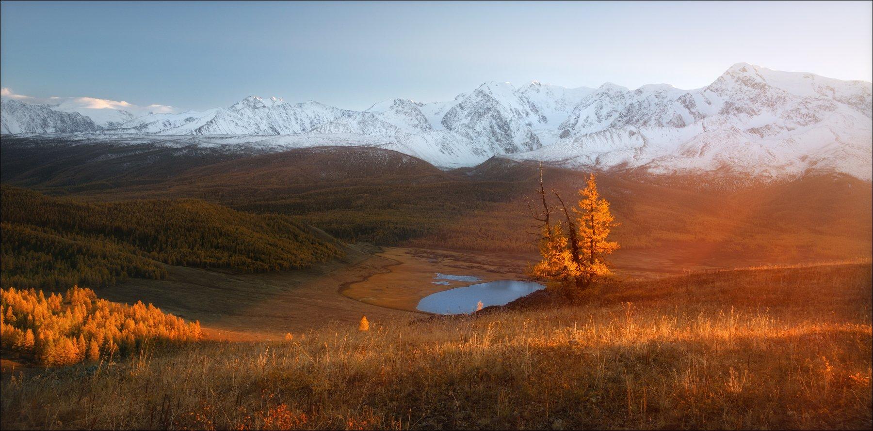 алтай, джангысколь, ештыколь, золото, осень, горы, северо-чуйский хребет, монголия, беркутчи, осень, фототур,, Влад Соколовский