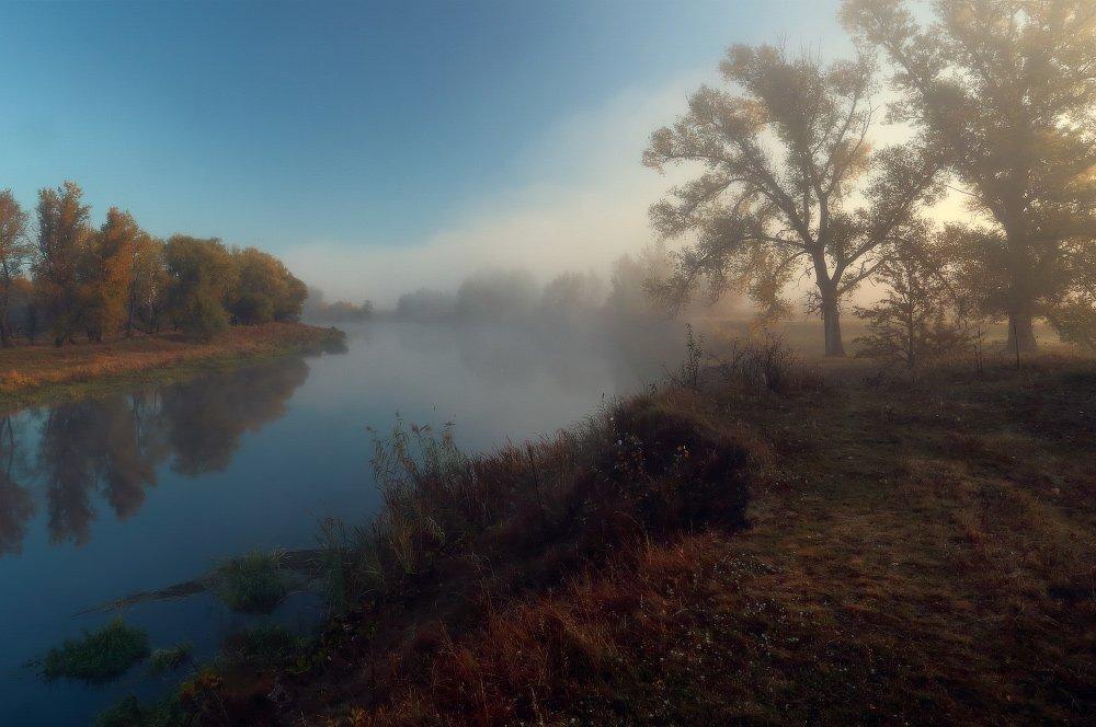утро осень солнце туман река, Петриченко Валерий