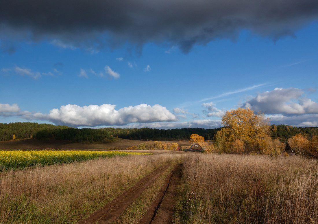 Поле трава колея цветы избушка склоны лес небо туча, Георгий Машковцев