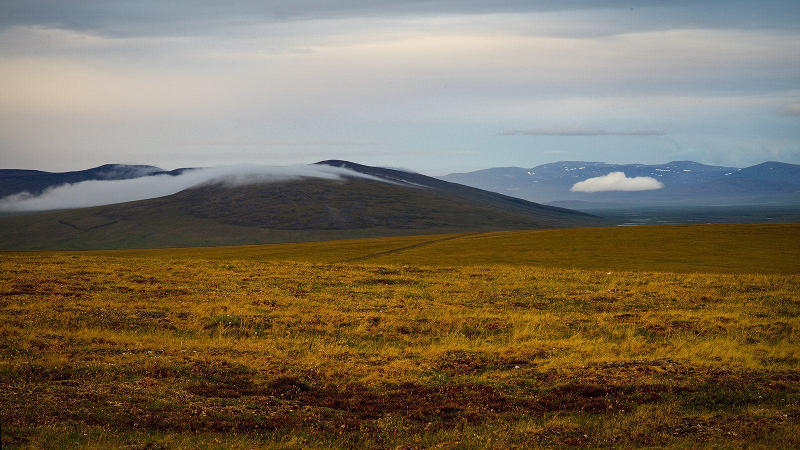 север, тундра, сопки, чукотка, пейзаж, природа, облака, небо,, Сергей Шульга