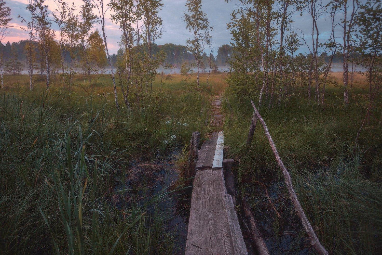 пейзаж, Таня She (Aiya)