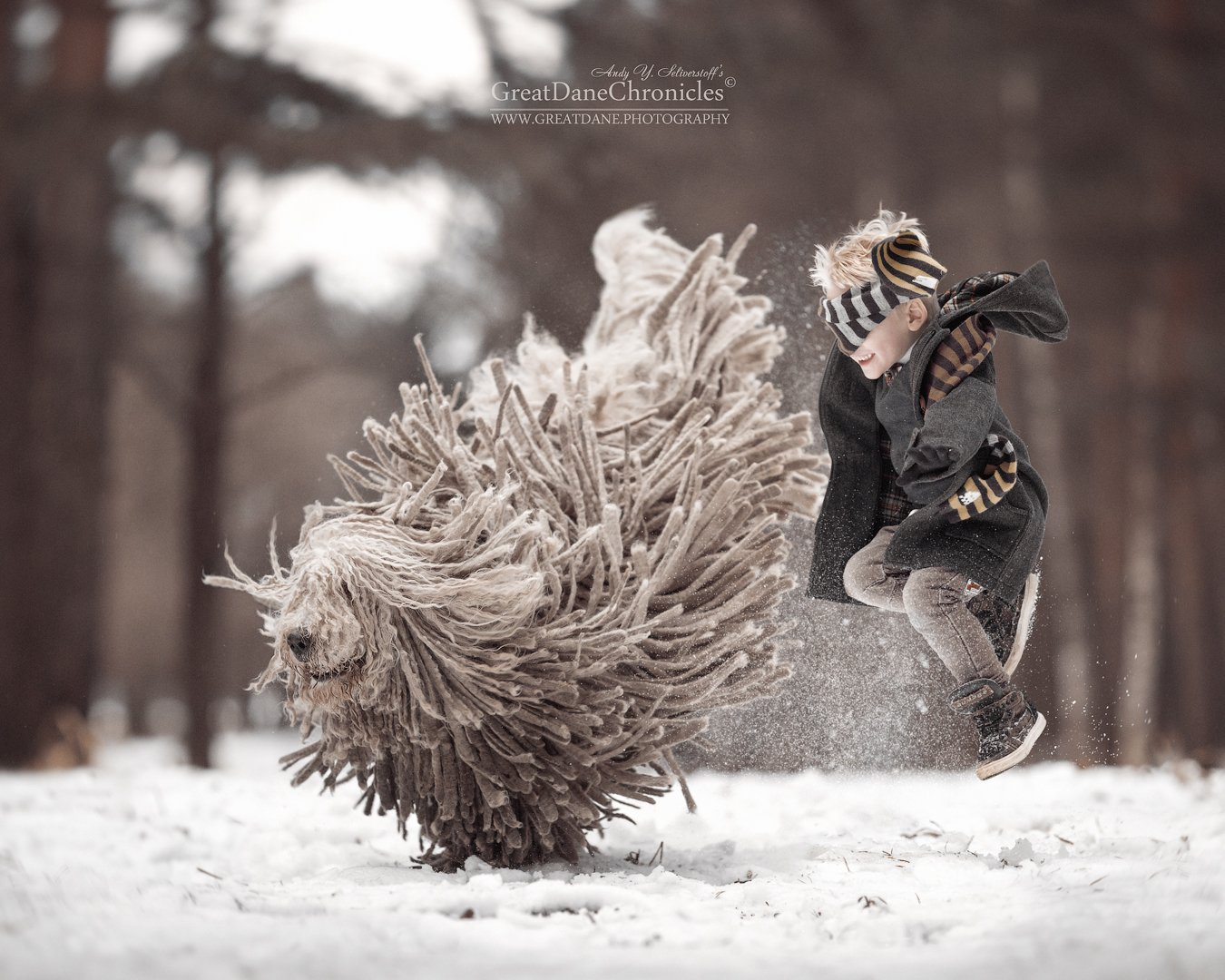 комондор, венгерская овчарка, собака, зима, полет, прыжки, Андрей Селиверстов