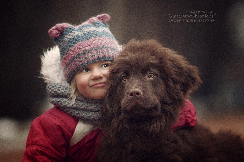 ньюфаундленд, щенок, ребенок, Андрей Селиверстов
