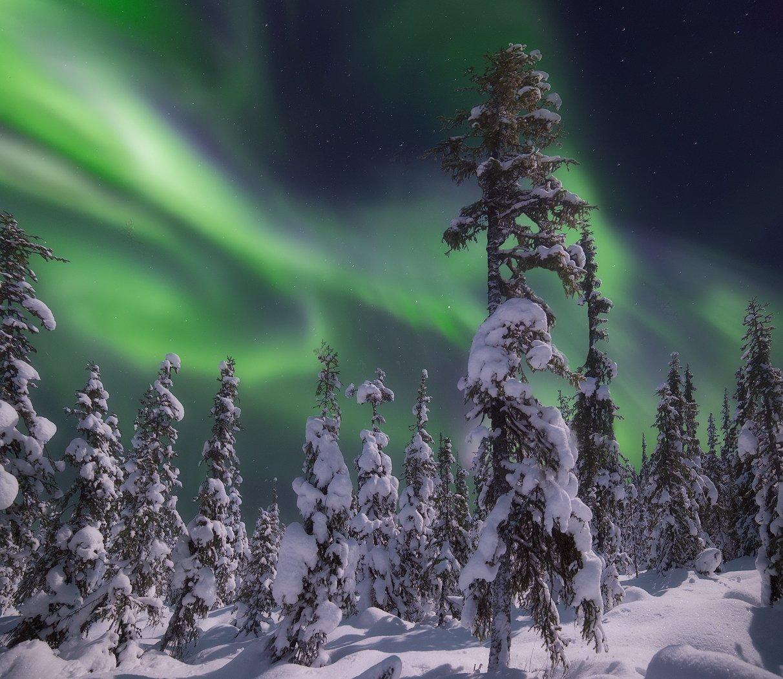 Aurora Borealis, Кольский полуостров, Северное сияние, Васильев Алексей
