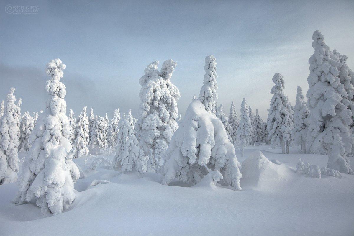 таганай зима лес урал, Сергей Сотников
