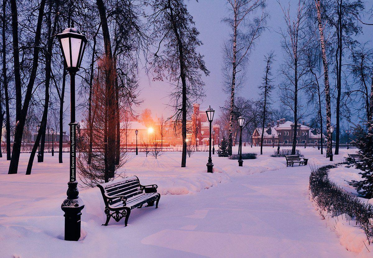 воронеж, Рамонь, зима, Бычков Денис