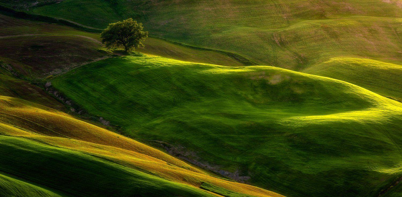 tuscany, Pawel Uchorczak
