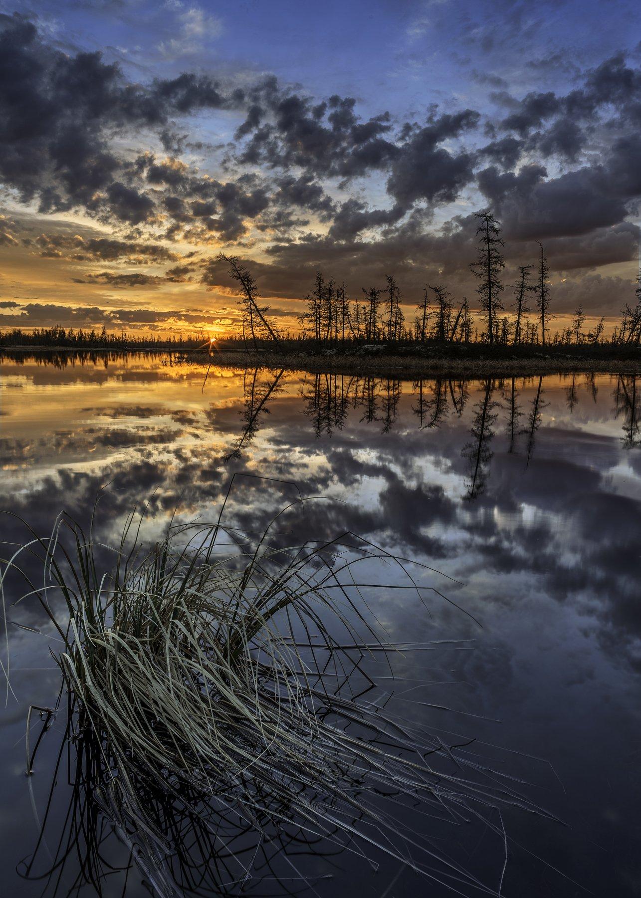 ямал, тундра, пейзаж, болото, россия, canon, закат, ночь, уренгой, новыйуренгой, Камиль Нуреев