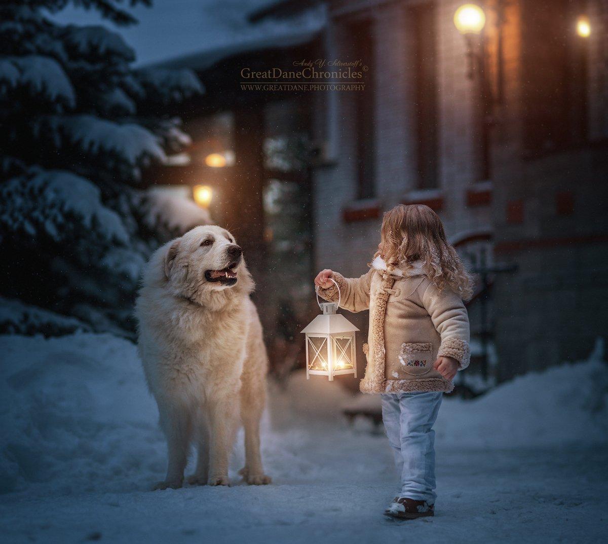собаки, дети, зима, рождество, сказка, большая горная пиренейская собака, Андрей Селиверстов