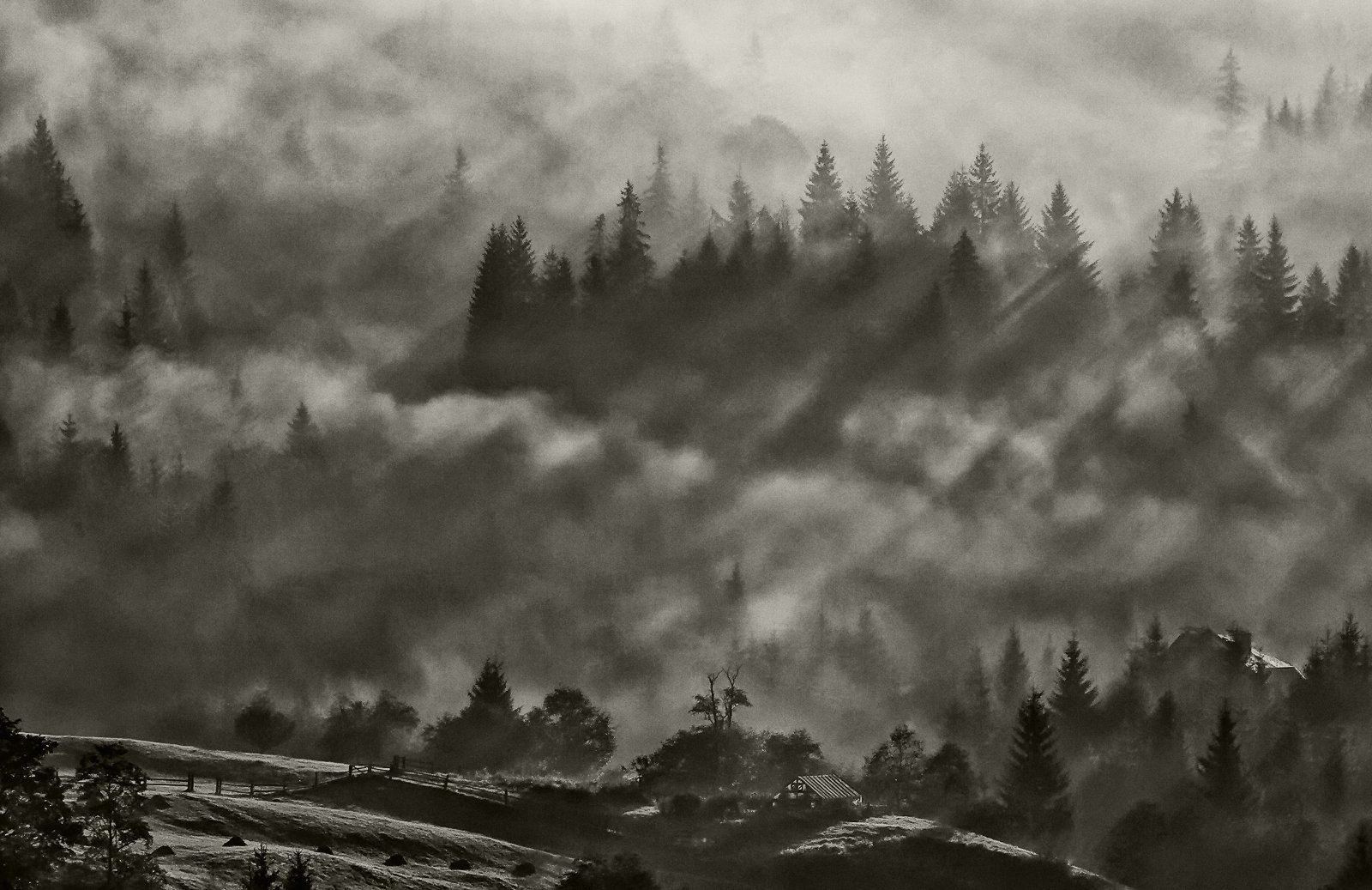 карпаты, осень, туман,утро, дземброня, Михаил Глаголев