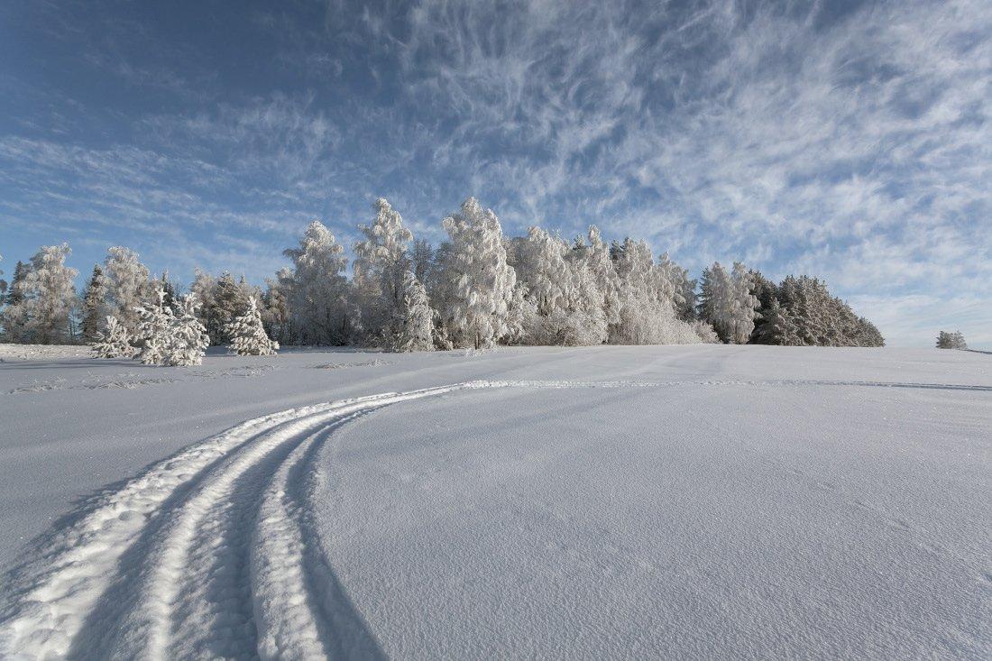 снег колея сугробы лес иней облака кружева зима мороз, Георгий Машковцев