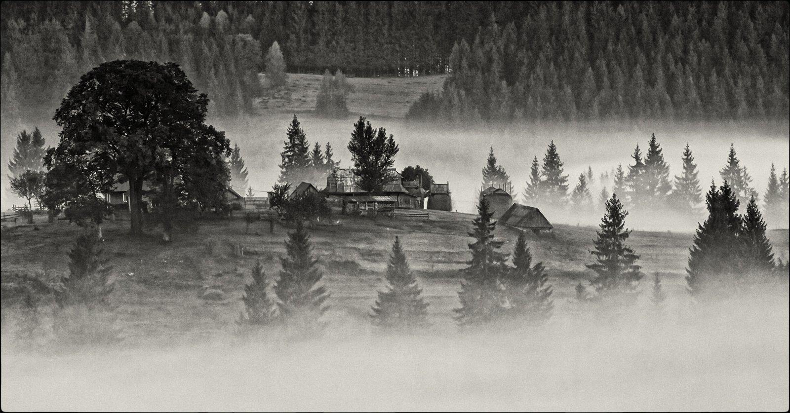 карпаты,осень, поселок, туман, утор,сенечив, Михаил Глаголев