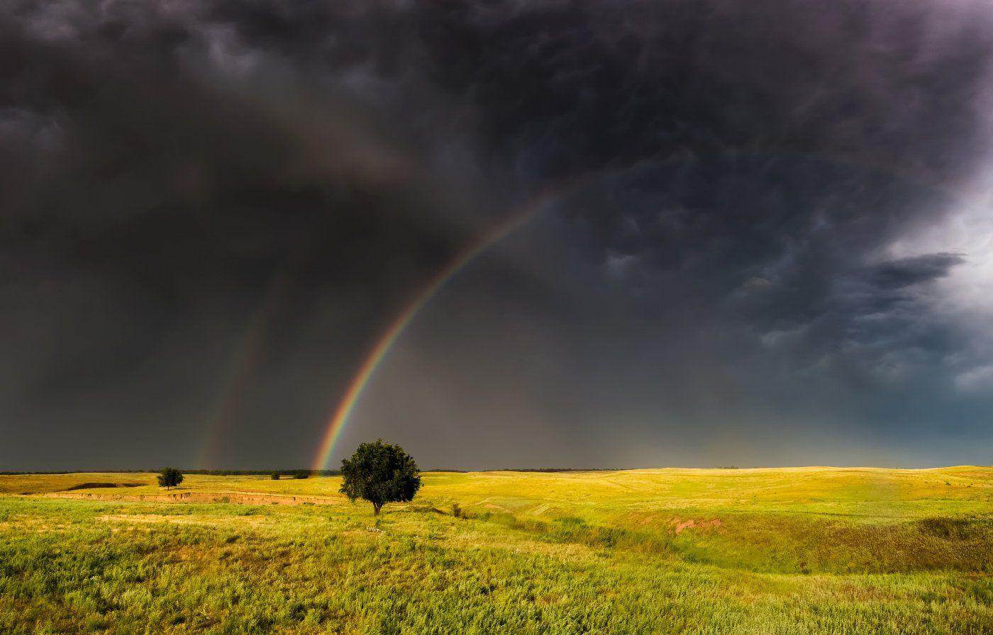 радуга, вечер, гроза, дерево, весна, Ольга Кулакова