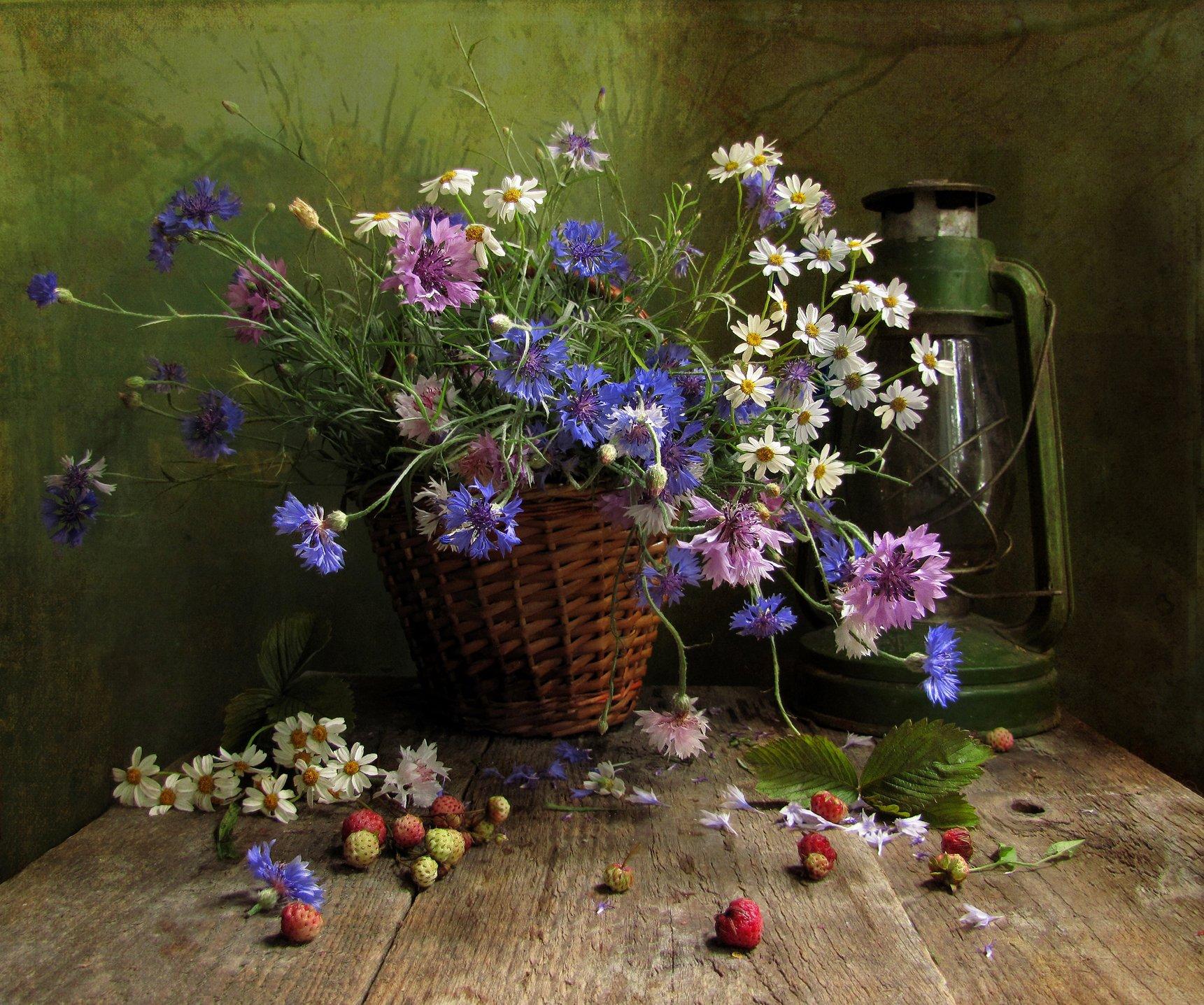 натюрморт, марина филатова, цветы, лето, Марина Филатова