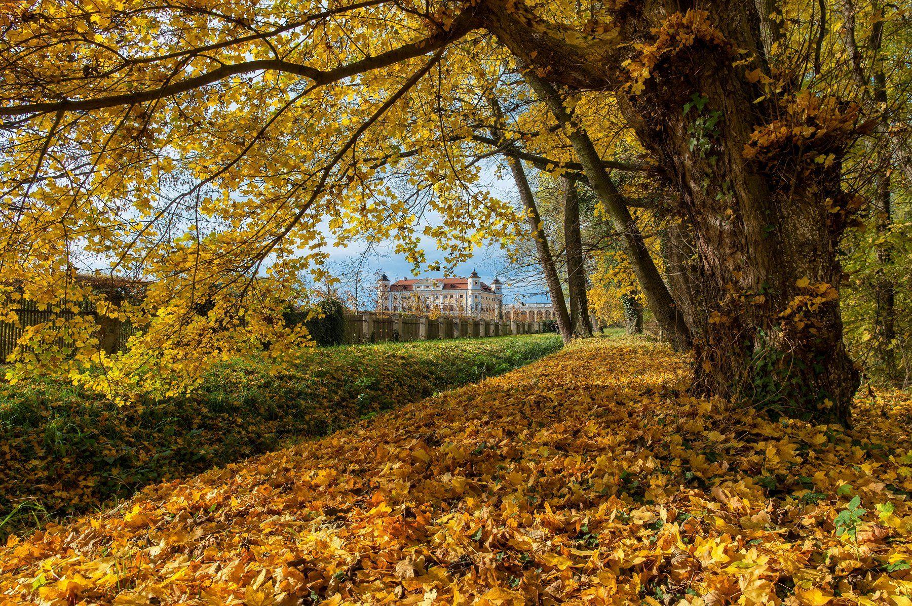 Чехия Южная Моравия осень пейзаж замок, Сергей Давыдов