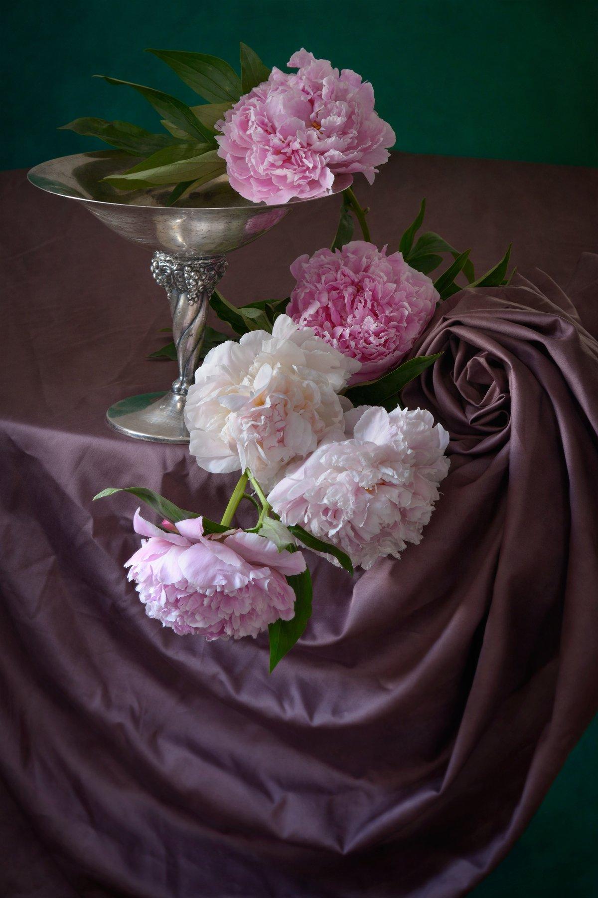 Классический, цветочный, натюрморт, пышный, букет, пион, оттенки, розовый, цвет, старинный, металлический, ваза, свернутый,  драпировка, естественный, освещение, начало лета, Николай Панов