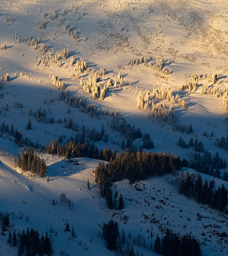 снег, мороз, иней, солнце, тепло, мустаг, шерегеш, горная шория, Валерий Пешков