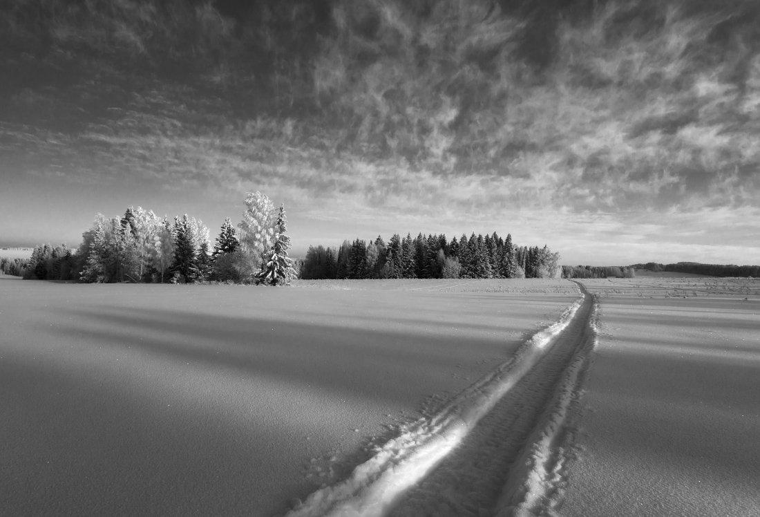Поле колея снег лес тени облака зима мороз, Георгий Машковцев