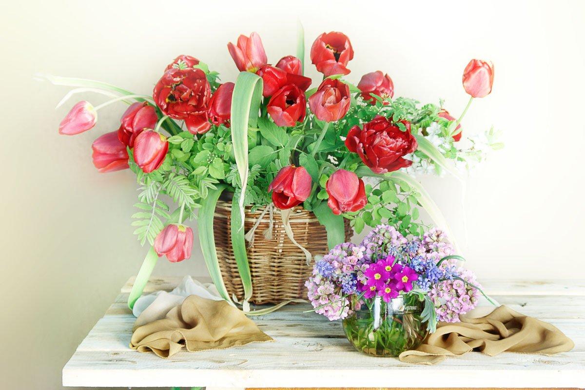 весна,тюльпаны,цветы,, Вера Павлухина