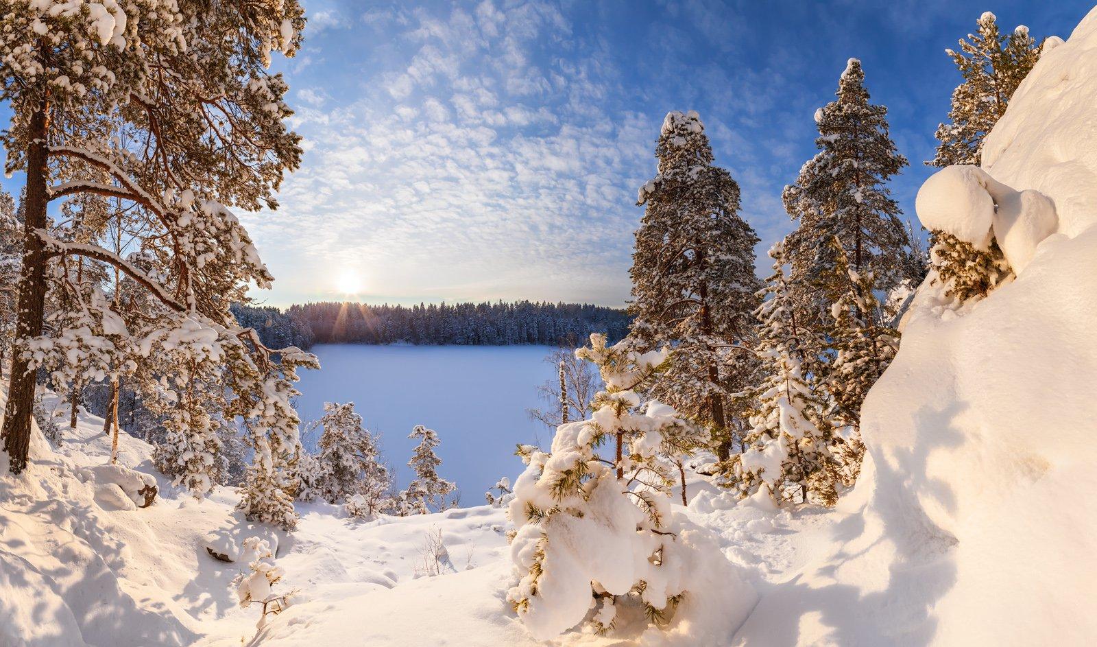 Ястребиное, Парнас, Ленинградская область, Ленобласть, зимний пейзаж, январь, Арсений Кашкаров