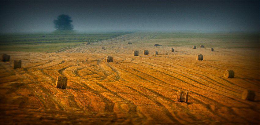 пейзаж, Sergey Koretsky