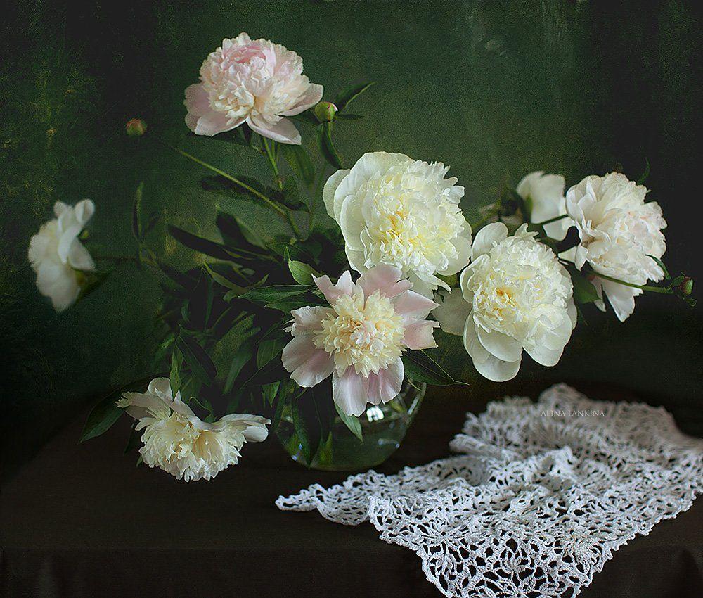 still life, натюрморт, цветы, пионы, алина ланкина, букет, лето, салфетка, Алина Ланкина