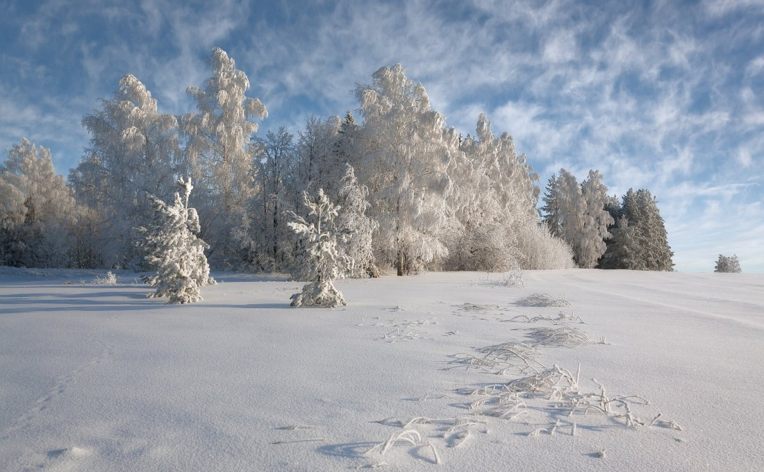 Снег иней сугробы лес облака кружева зима мороз, Георгий Машковцев
