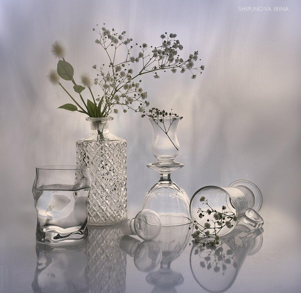 стекло отражение гипсофила, Шипунова Ирина