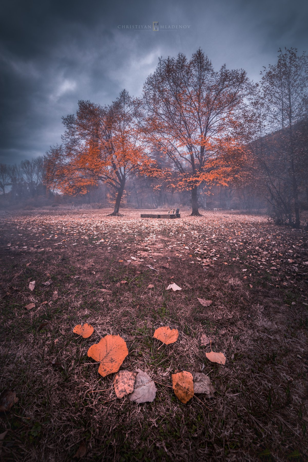 autumn, fall, landscape, trees, forest, woods, bulgaria, colors, nature, fog, mist, rain, october, sky, clouds, Кристиян Младенов
