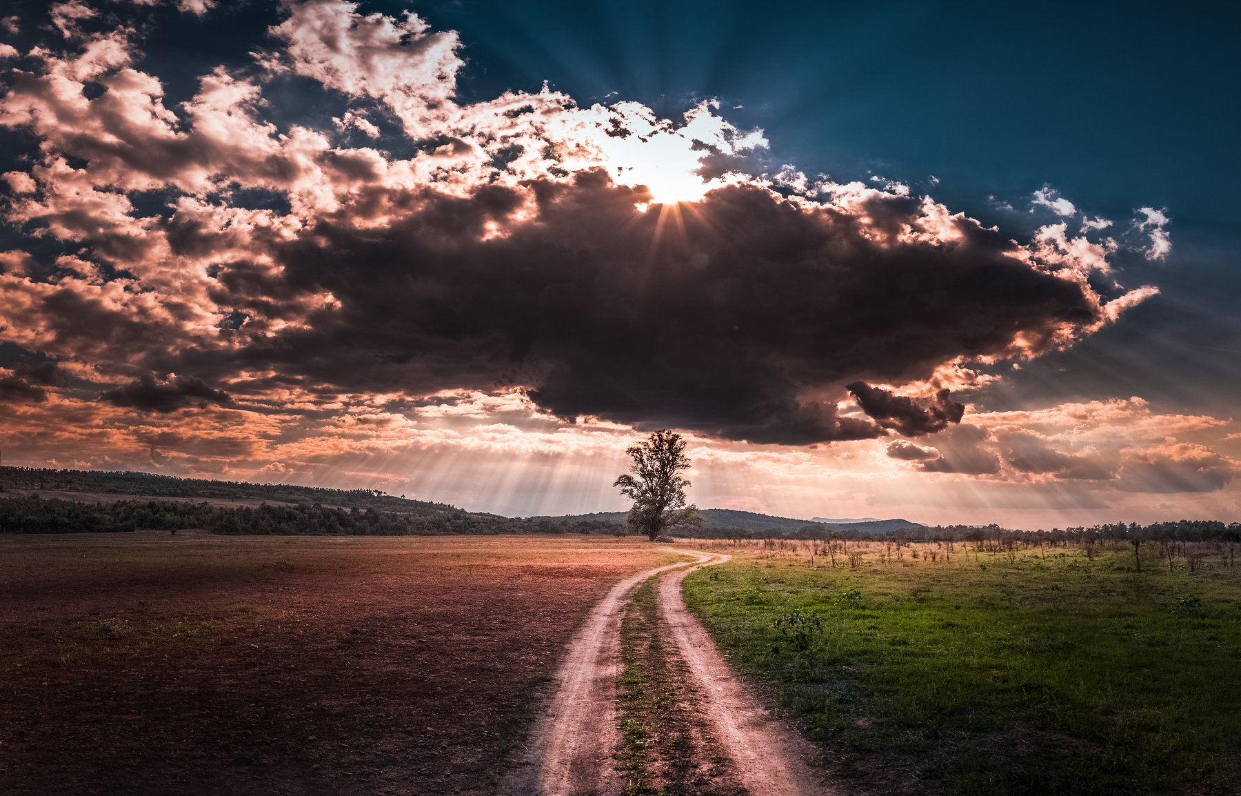 landscape, autumn, summer, road, field, clouds, sky, rays, sunrays, bulgaria, nature, tree, Кристиян Младенов