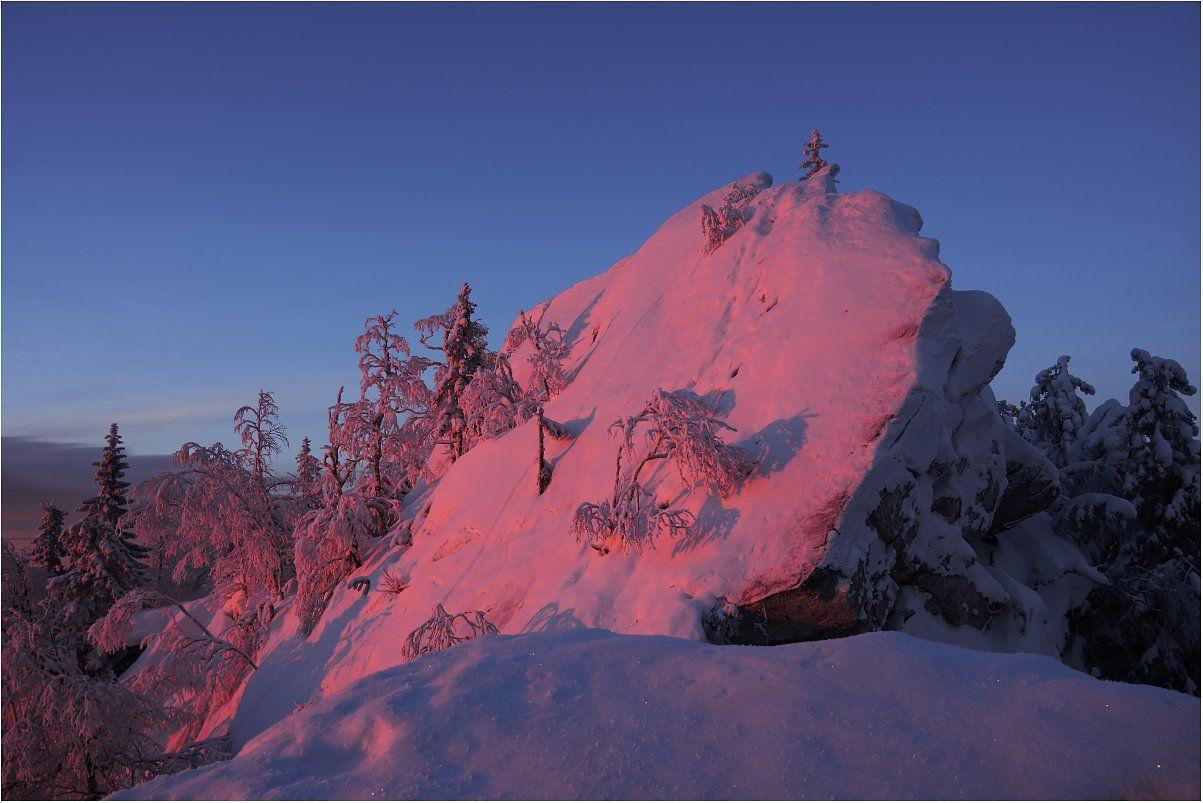 рассвет, скалы,деревья, снег, Кондратьев Алексей
