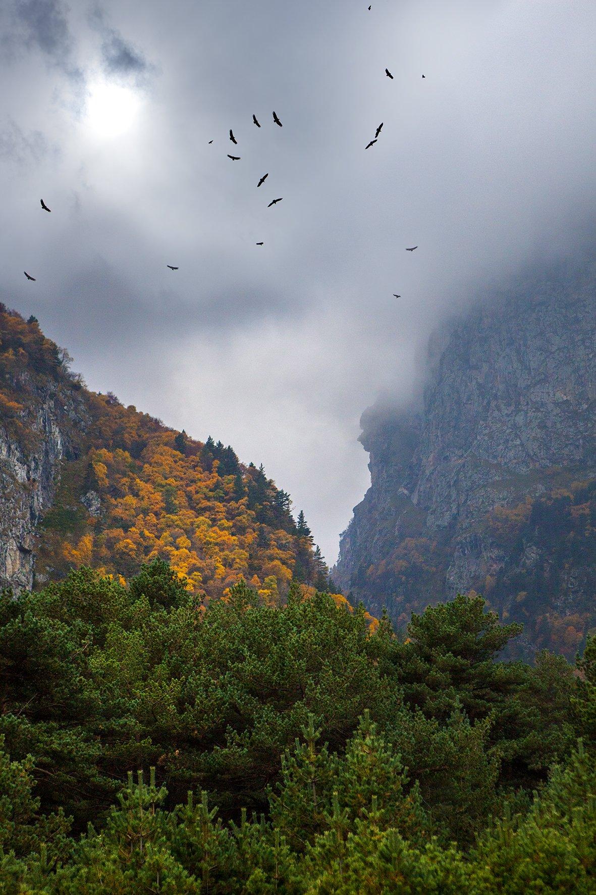 горы, кавказ, ущелье, черек, кабардино-балкария, Заур Вороков