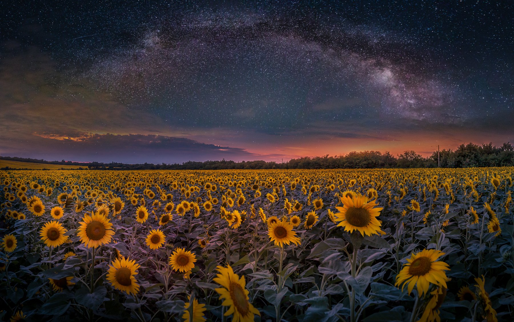 astrophotography, astroscape, astronomy, galaxy, milky way, nightscape, night, sky, stars, long exposure, nature, bulgaria, space, panorama, sunflowers, summer, Кристиян Младенов