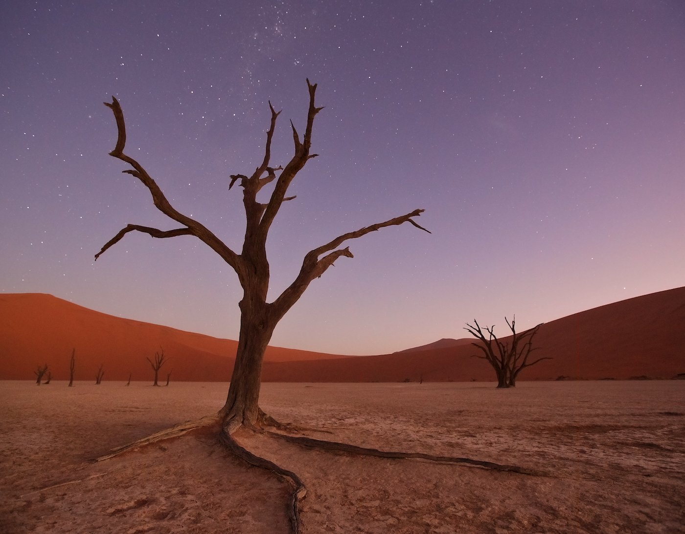#loveafrica, mc, namibia, намибия, dead vlei, namib naukluft national park, west africa, Маргарита Чернилова