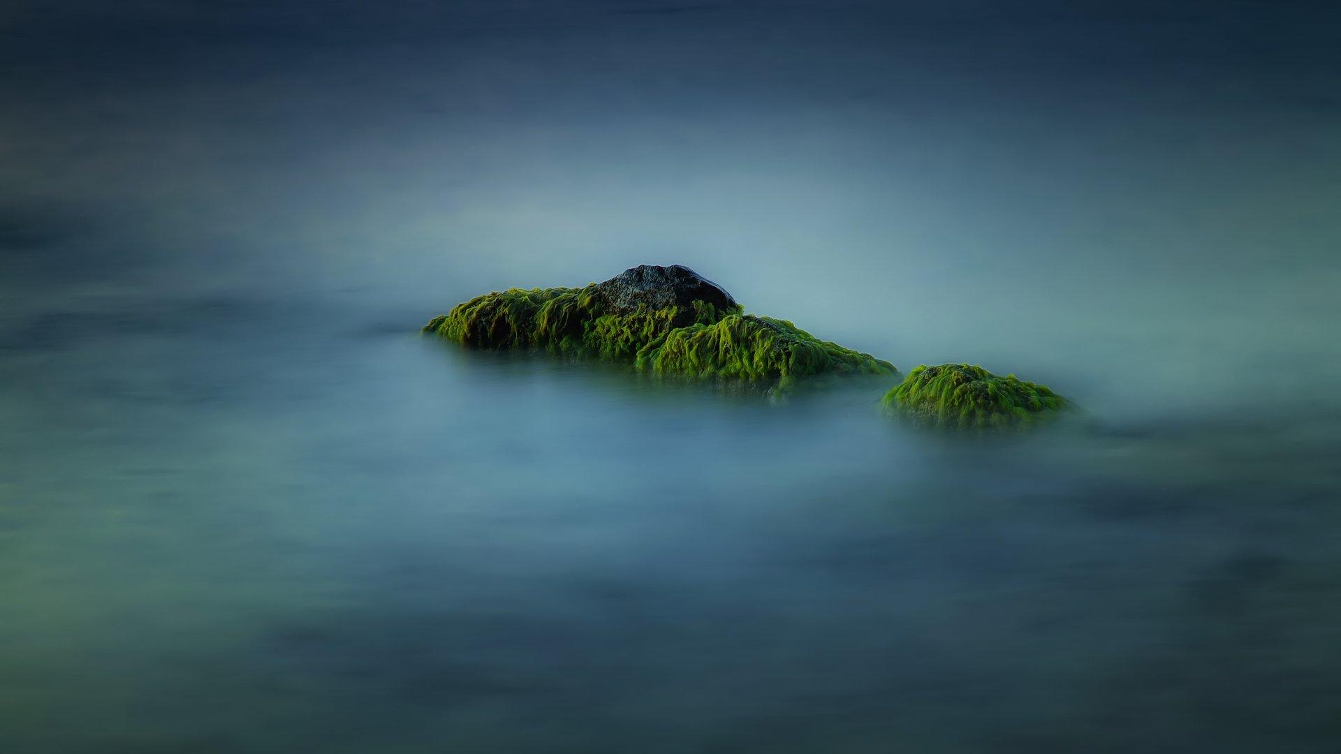 вода камни водоросли природа море лето, Serj Master