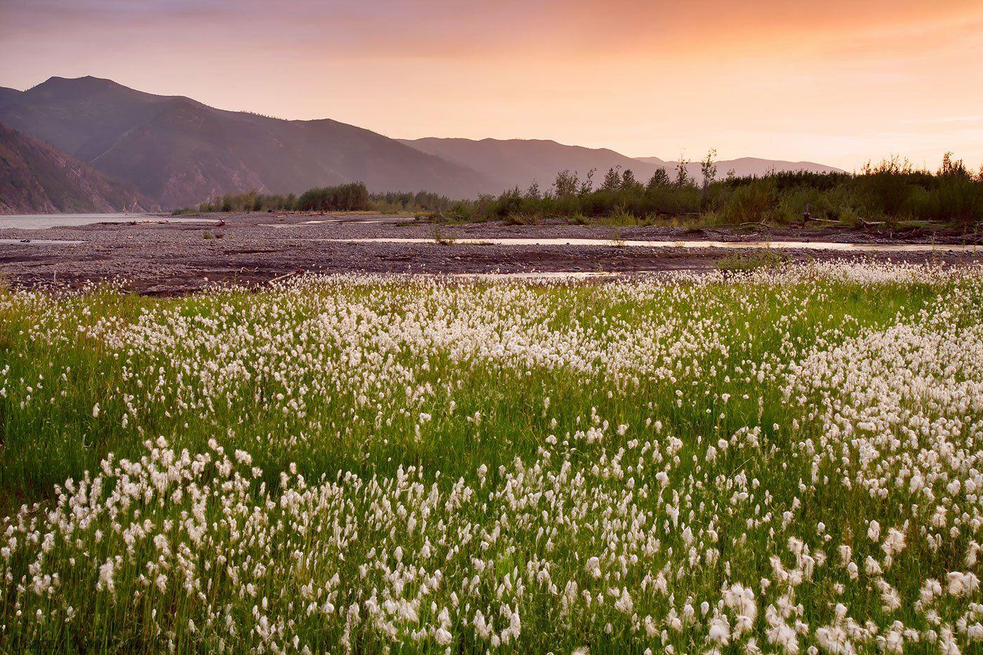 якутия, река мома, Сергей Карпухин