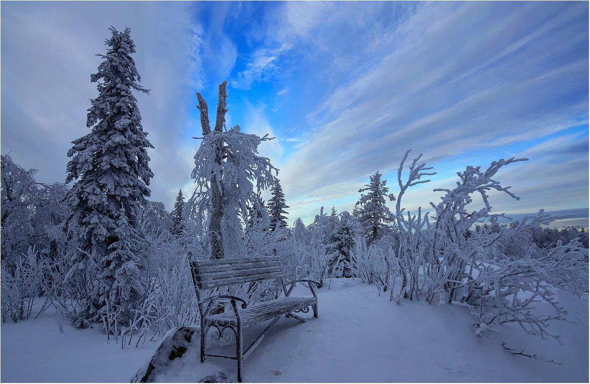 зима снег деревья скамейка, Кондратьев Алексей